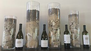 Soil Samples from the Vineyards in Adelaida